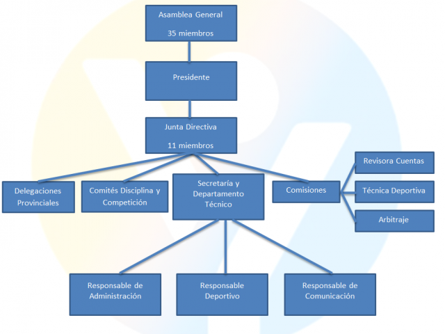 Estructura Federación de Deporte Adaptado de Castilla y León